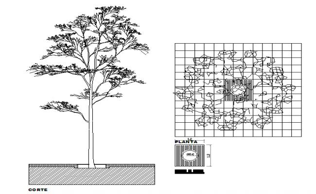 Tree Block Design