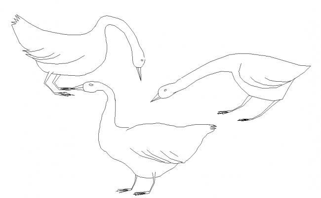 Bird Detail Cad File