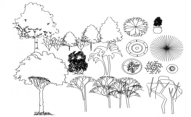 Tree Block Design