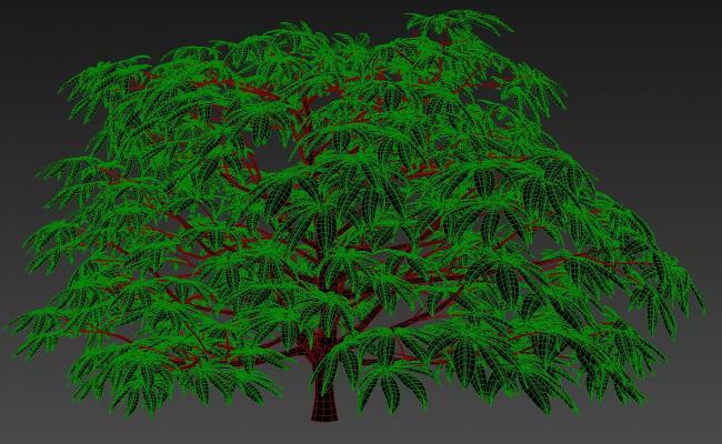 3D Fatsia Plant MAX File