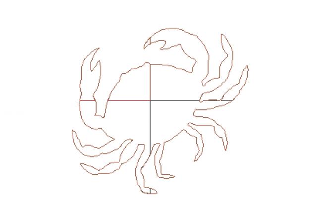 3D crab details
