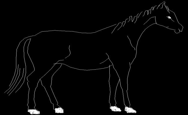 2d Horse