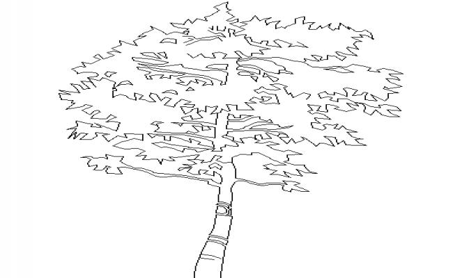 Single Tree Block Detail