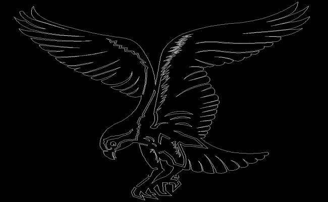 2d Eagle