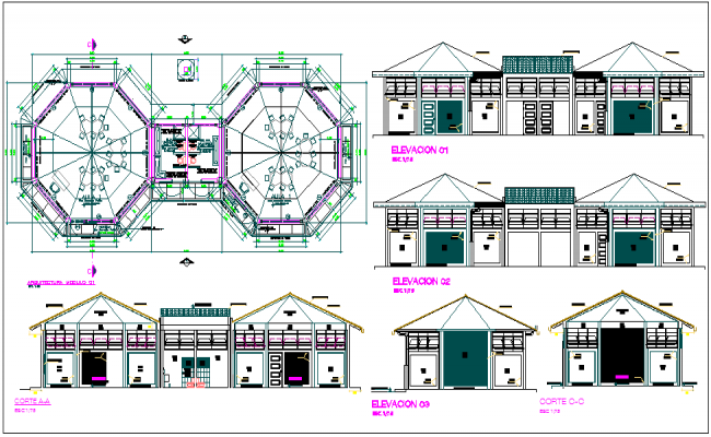 Architectural plan,elevation and section view of collage building dwg file