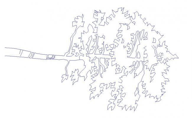 Autocad drawing of trees