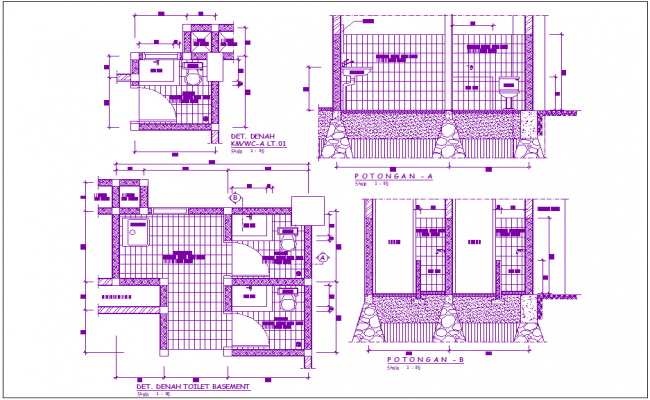 Basement toilet plan and section view for office area dwg file
