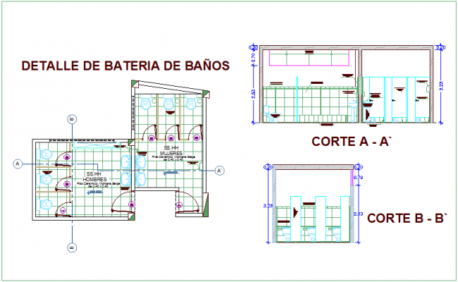 Bathroom Planelevation And Section View Of Community Center Dwg File