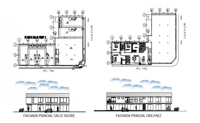 Design Of Local Apartment Plan And Elevation In AutoCAD File