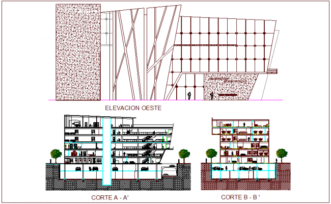 Elevation and different axis section view for hospital dwg file