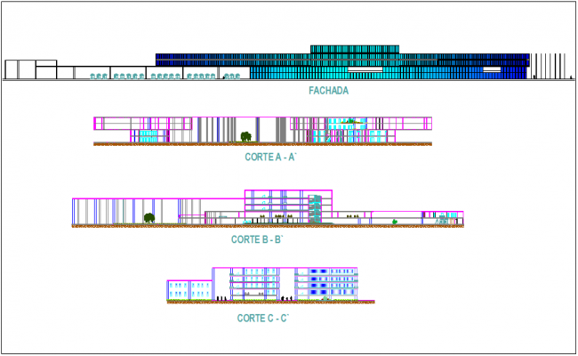 Elevation and section view for communal market building dwg file