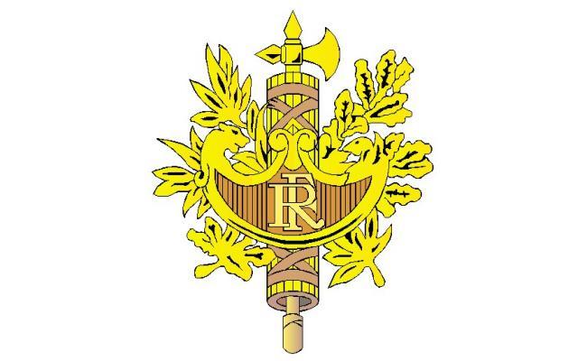 Emblem of France logo 3d block cad drawing details dwg file