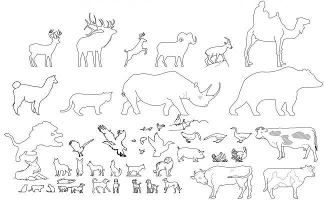 Free Animal CAD blocks dowload