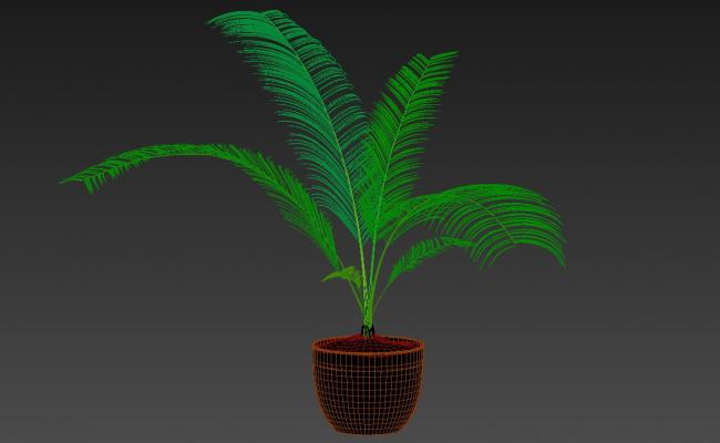 Free Download Palm Tree Plant Design 3ds Max File