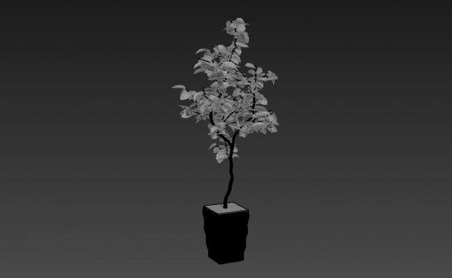 Landscape Plant 3d model