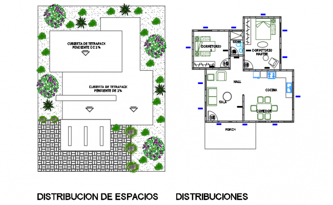 Landscaping and architectural plan
