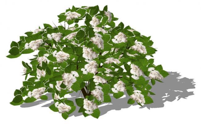 Landscaping plants detail 3d model CAD blocks layout sketch-up file
