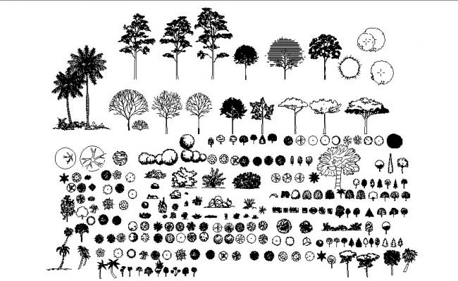 Miscellaneous garden tree plants blocks cad drawing details dwg file