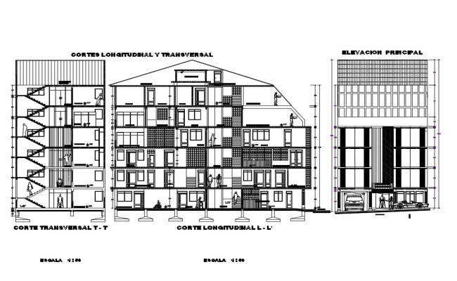 Multi-family residential building main elevation and transverse and longitudinal section details dwg file