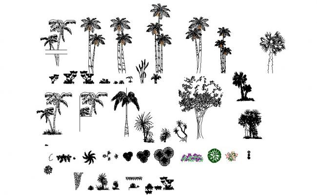 Multiple garden trees and plants blocks cad drawing details dwg file