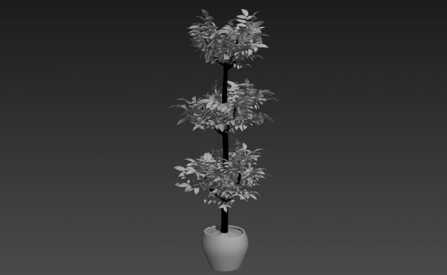 Potted Plant 3d Max File