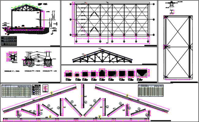 Roof plan and king post detail and section plan detail dwg file