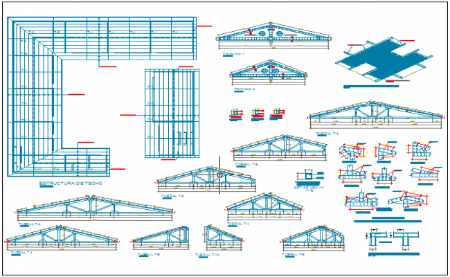 Roof plan with steel structural detail and section view dwg file