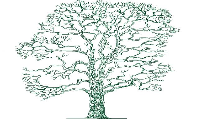 The architecture design of single tree design dwg file