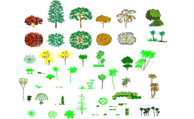 Tree cad plan detail dwg file.