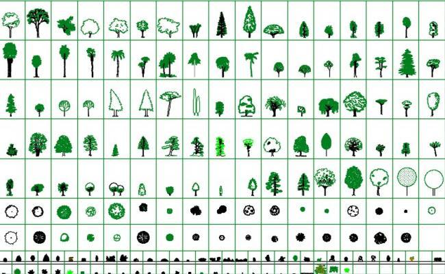 Trees 2d cad blocks