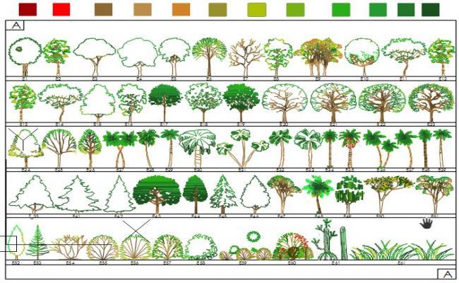 Trees elevations