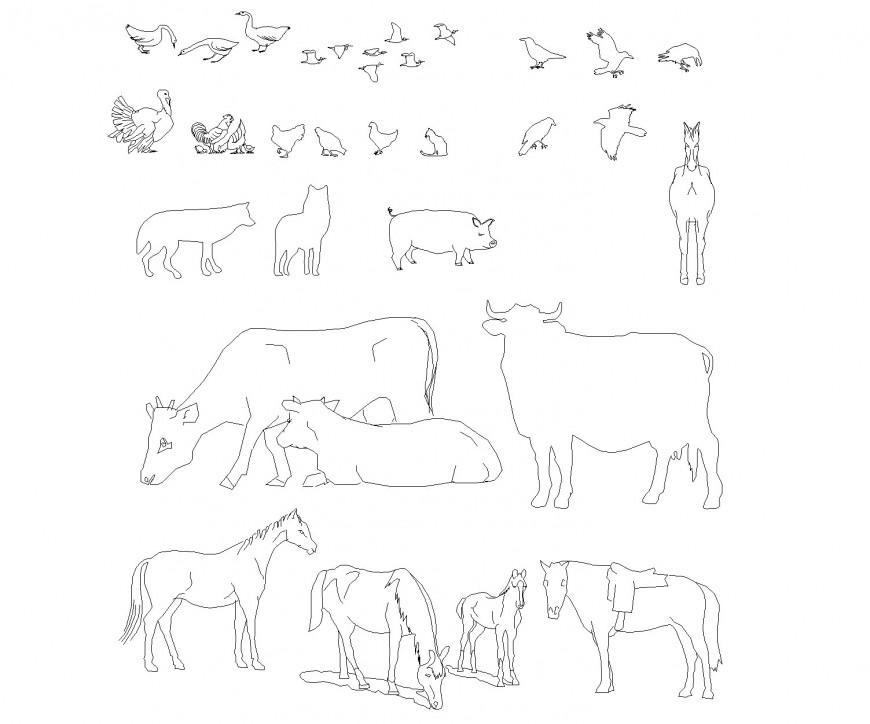 A animals plan layout file
