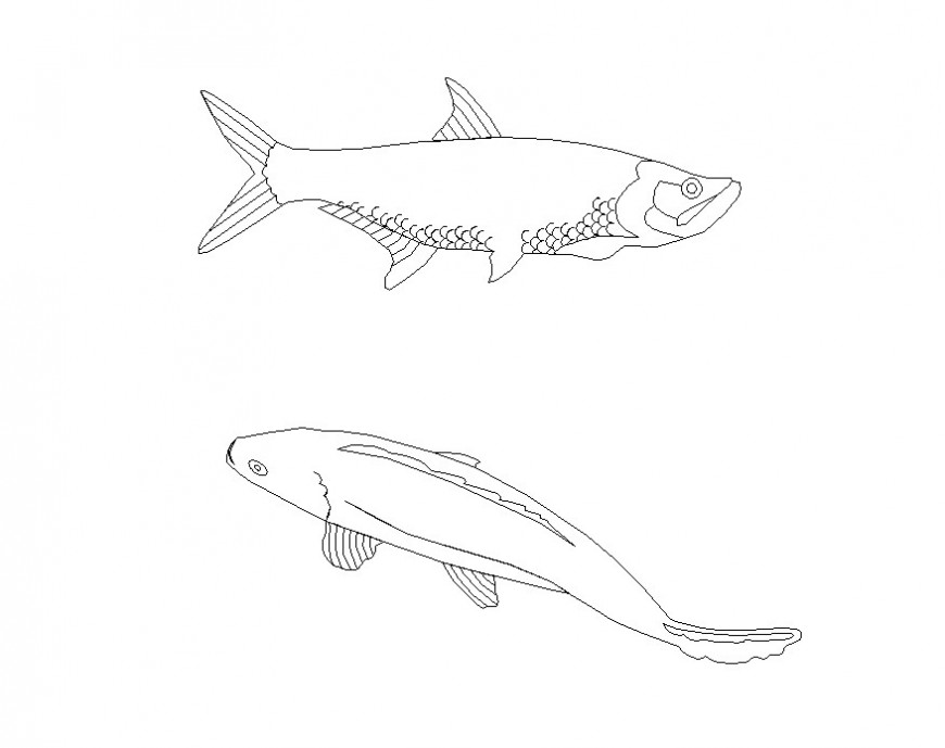 Aquatic animals detail 2d view CAD blocks layout file in autocad format