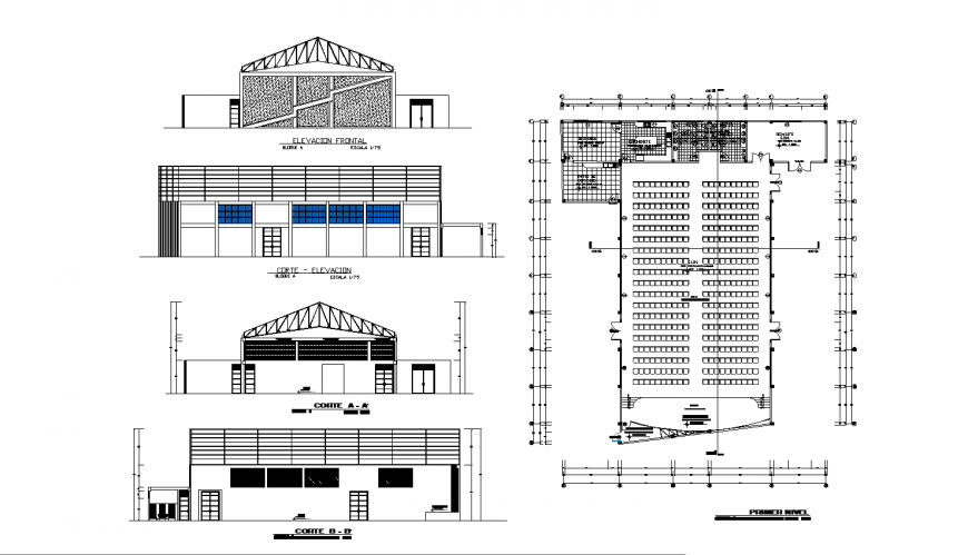 Auditorium hall building elevation, section and plan cad drawing details dwg file