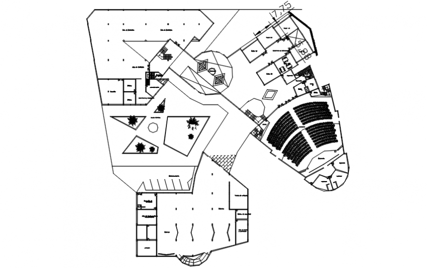 Auditorium plan in AutoCAD software