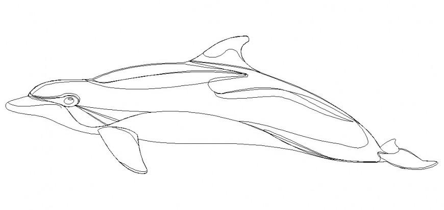 Autocad file of sea animal