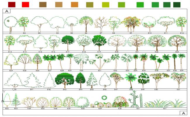 Various type of tree blocks