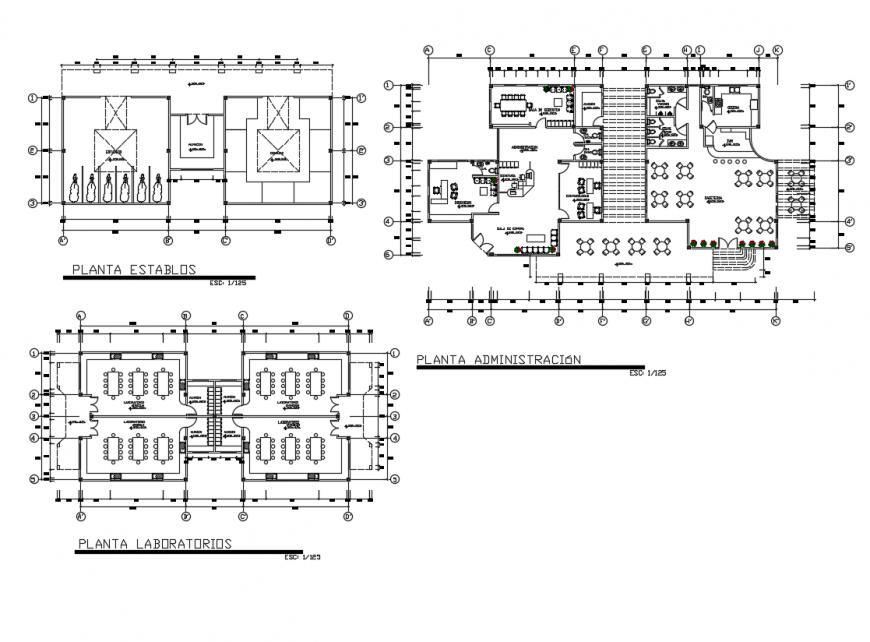 Big auditorium training center layout plan dwg file