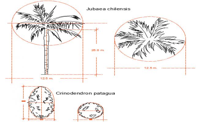 blocks of plant