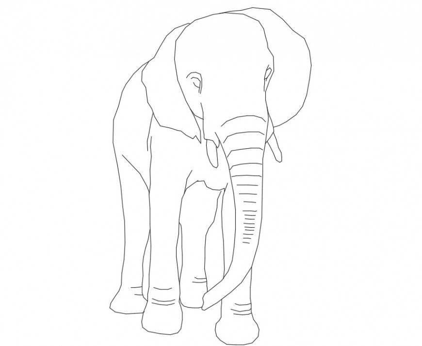 CAd drawings details of elephant