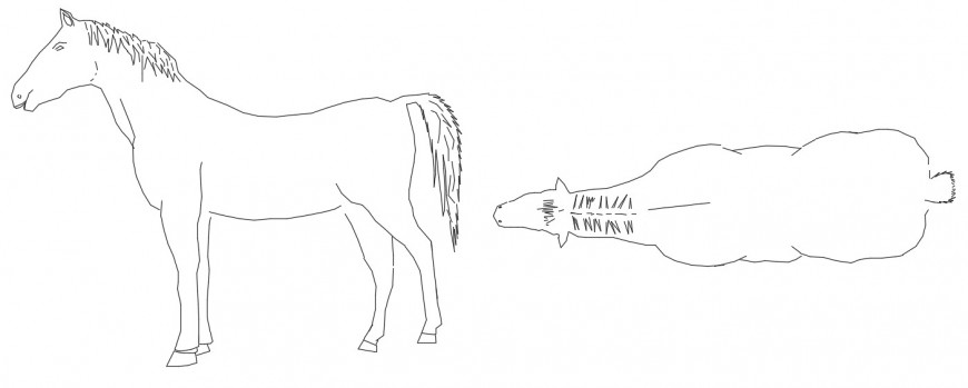 CAd drawings details of top view of horse
