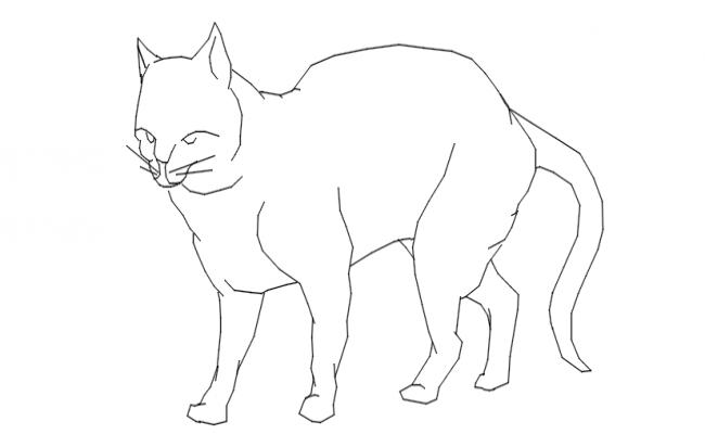 cat dwg file