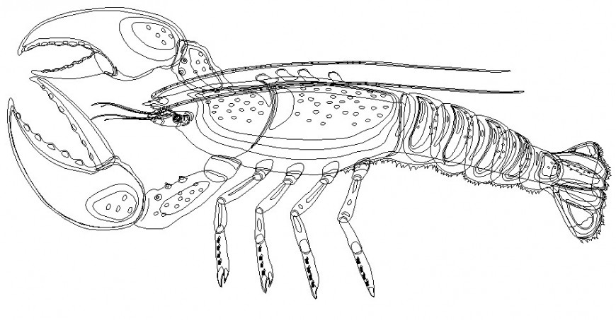 Creative lobster 2d elevation block cad drawing details dwg file
