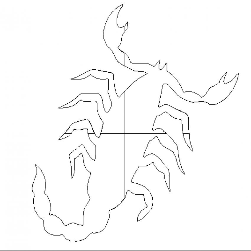 Creative scorpion cad block design dwg file