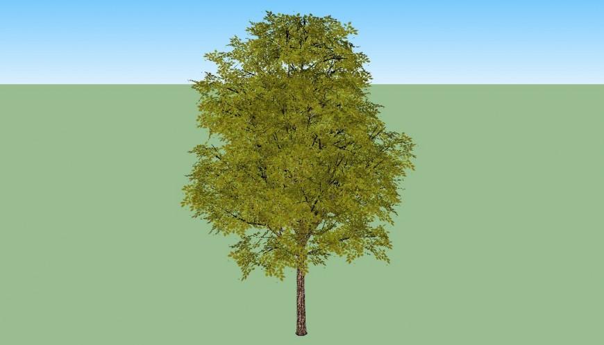 3d model of tree in skp in Sketch Up file.