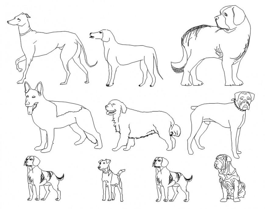 Different types of dog blocks