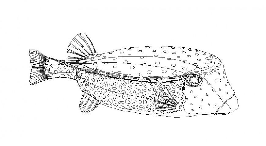 Drawings details of aquatic fish of animal units dwg file