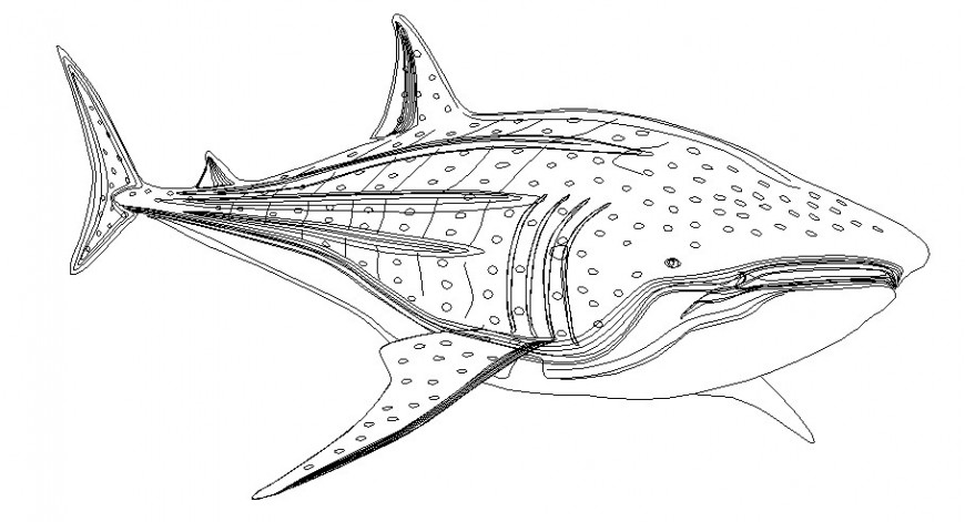 Dynamic shark fish 2d side elevation block drawing details dwg file