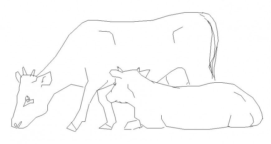 Elevation of cattle cow drawings of animal units dwg autocad file