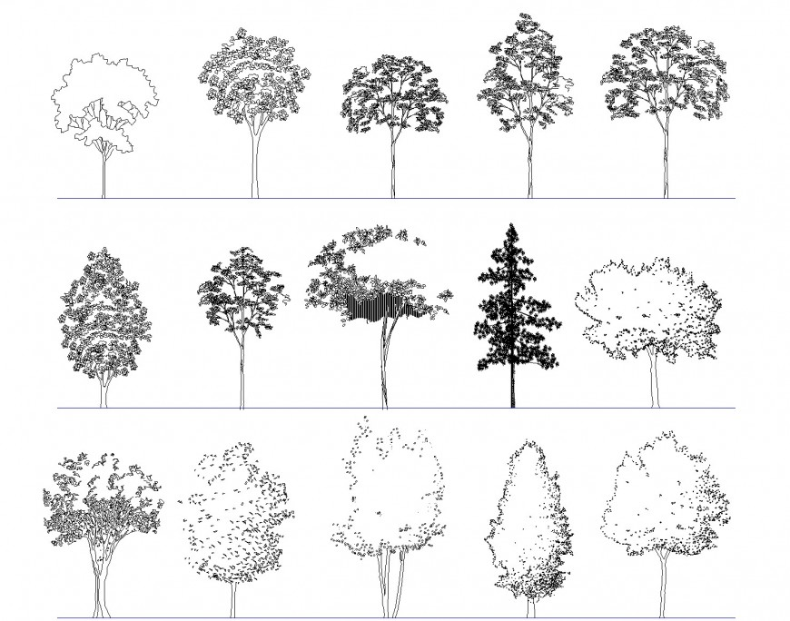 Elevation of deciduous trees dwg file